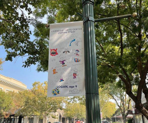 Carnegie banner pic1