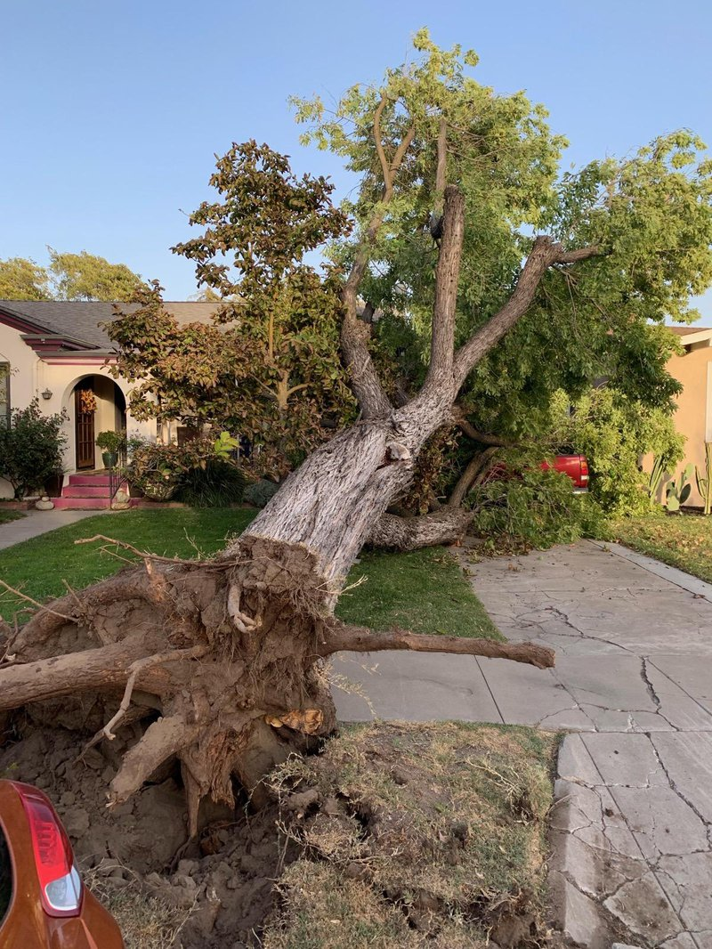 high winds pic2
