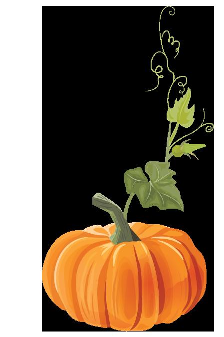 pumpkins-1.png